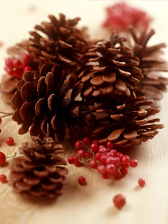 圣诞松果Christmas Pinecone! 7078)