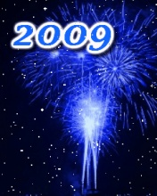 Happy New Year 2009! 12984)